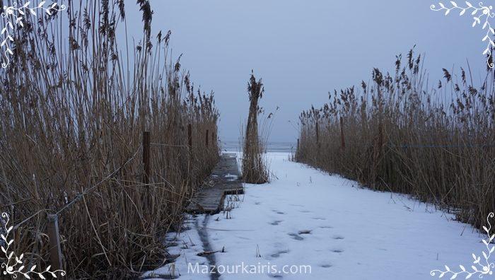 ポーランド生活冬ワルシャワ観光おすすめブログ