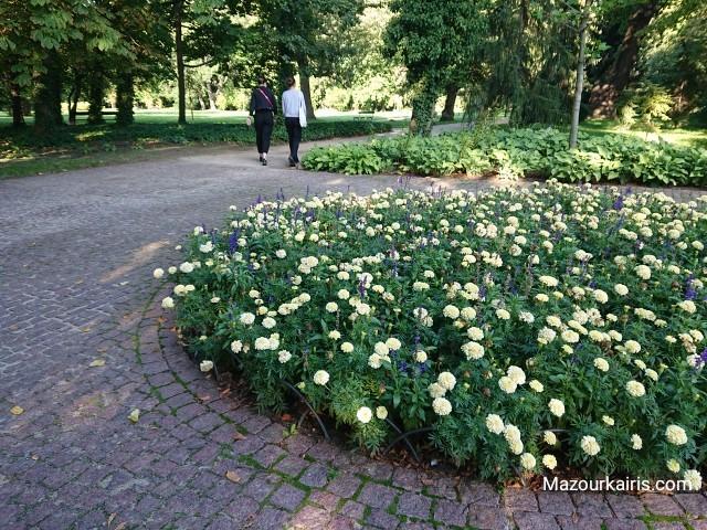 ポーランド観光ワルシャワショパンワジェンキ公園